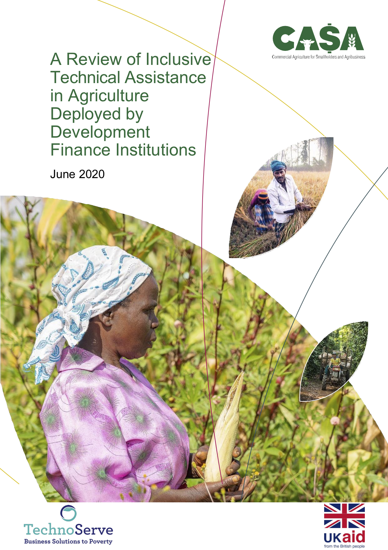 A Review of Inclusive Technical Assistance in Agriculture Deployed by Development Finance Institutions