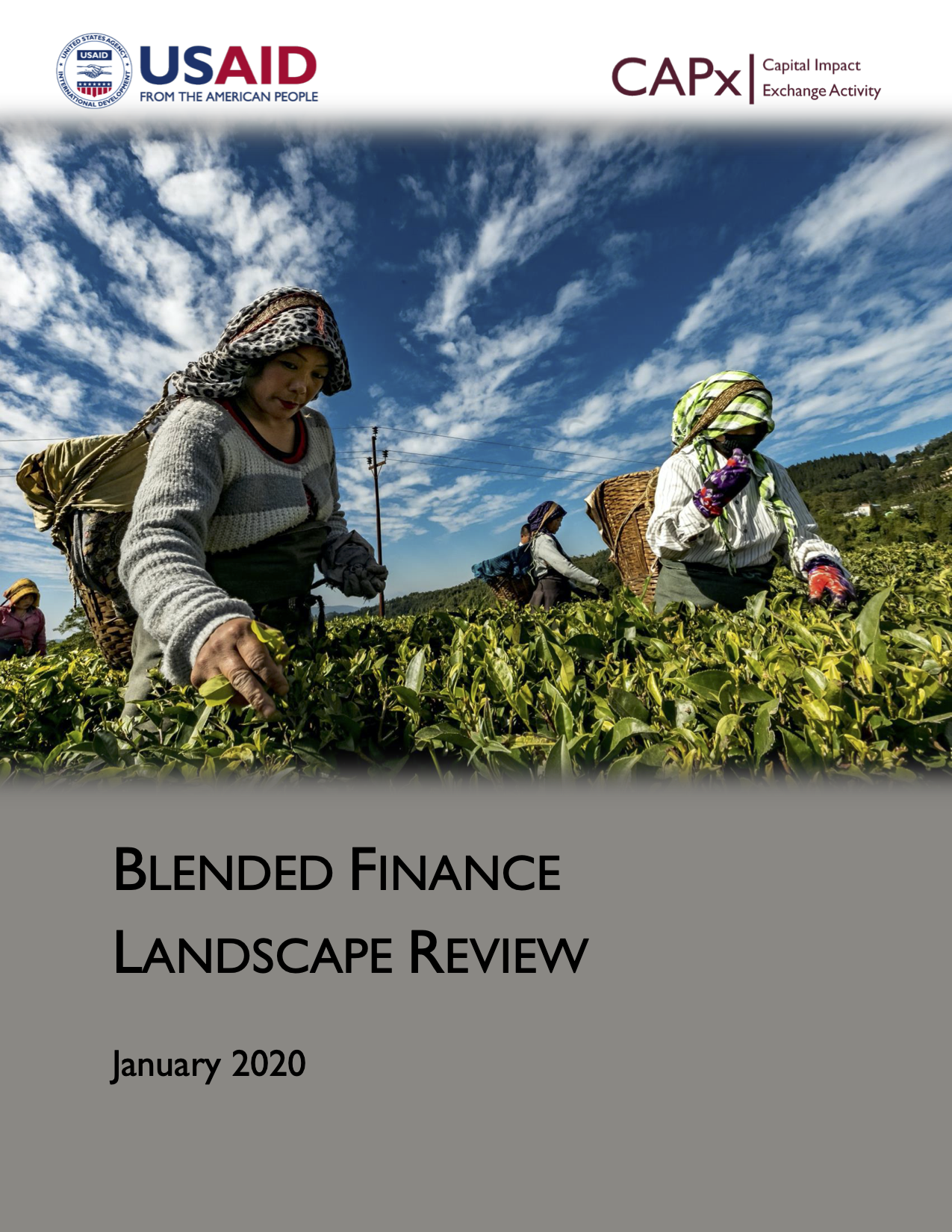Blended Finance Landscape Review