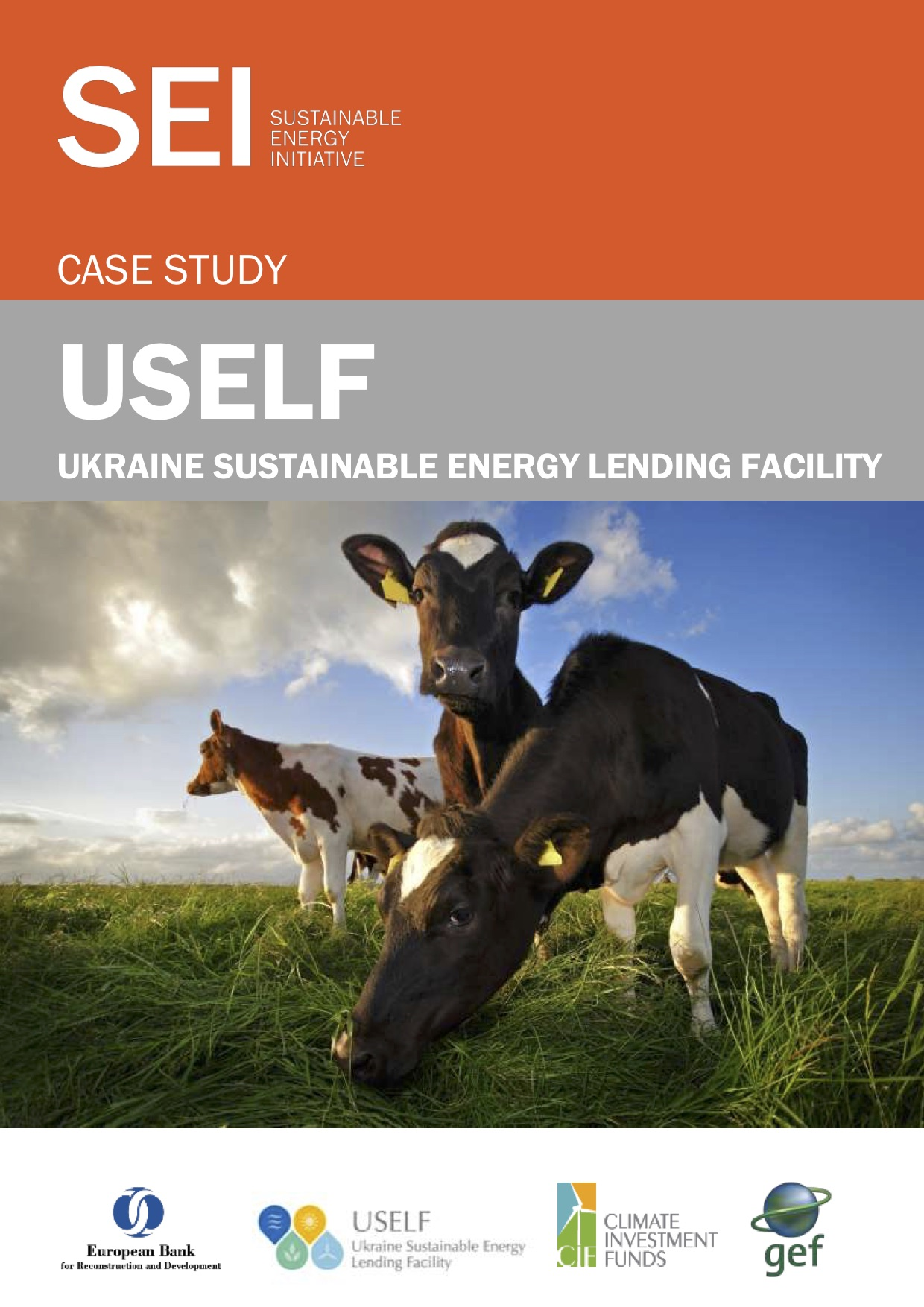 Case Study: Ukraine Sustainable Energy Lending Facility