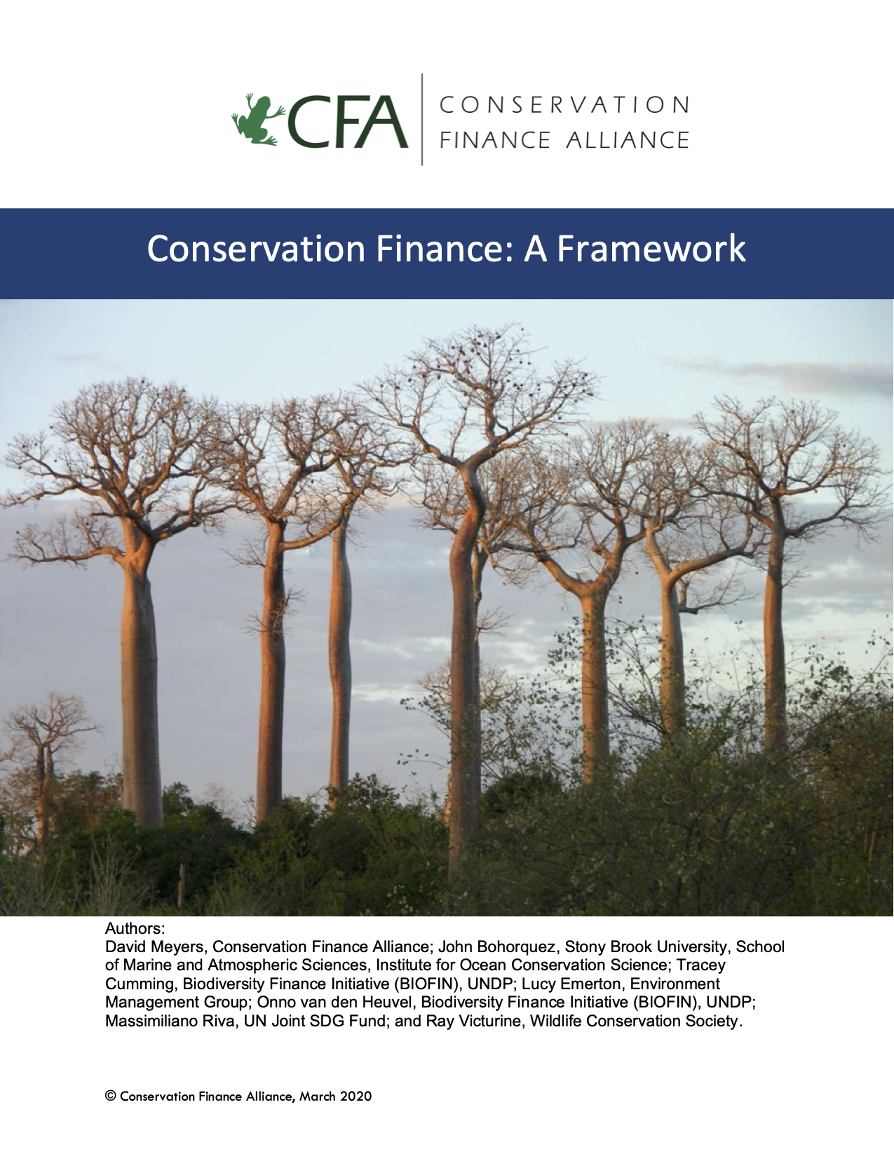 Conservation Finance: A Framework