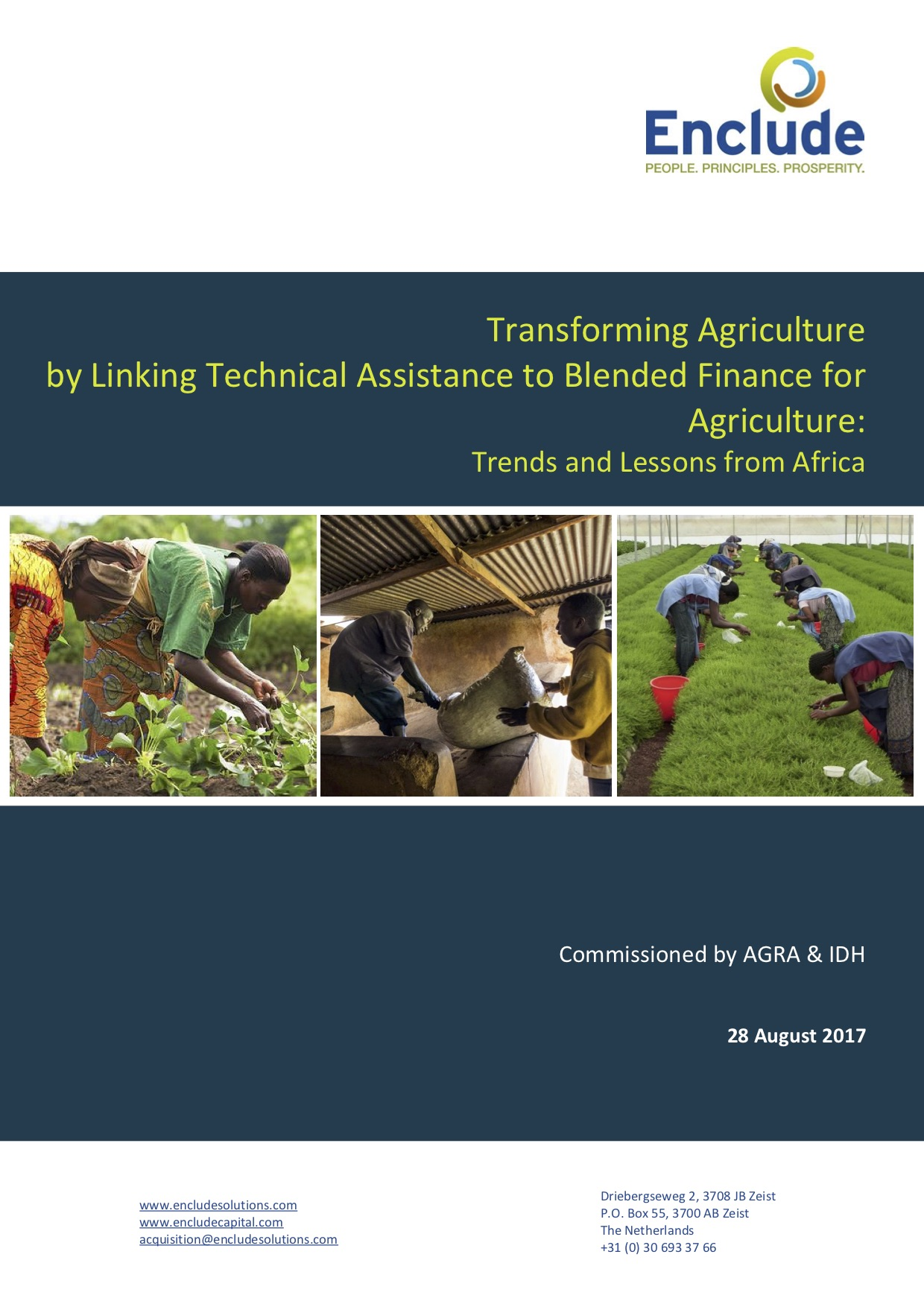 Transforming Agriculture by Linking Technical Assistance to Blended Finance for Agriculture: Trends and Lessons from Africa
