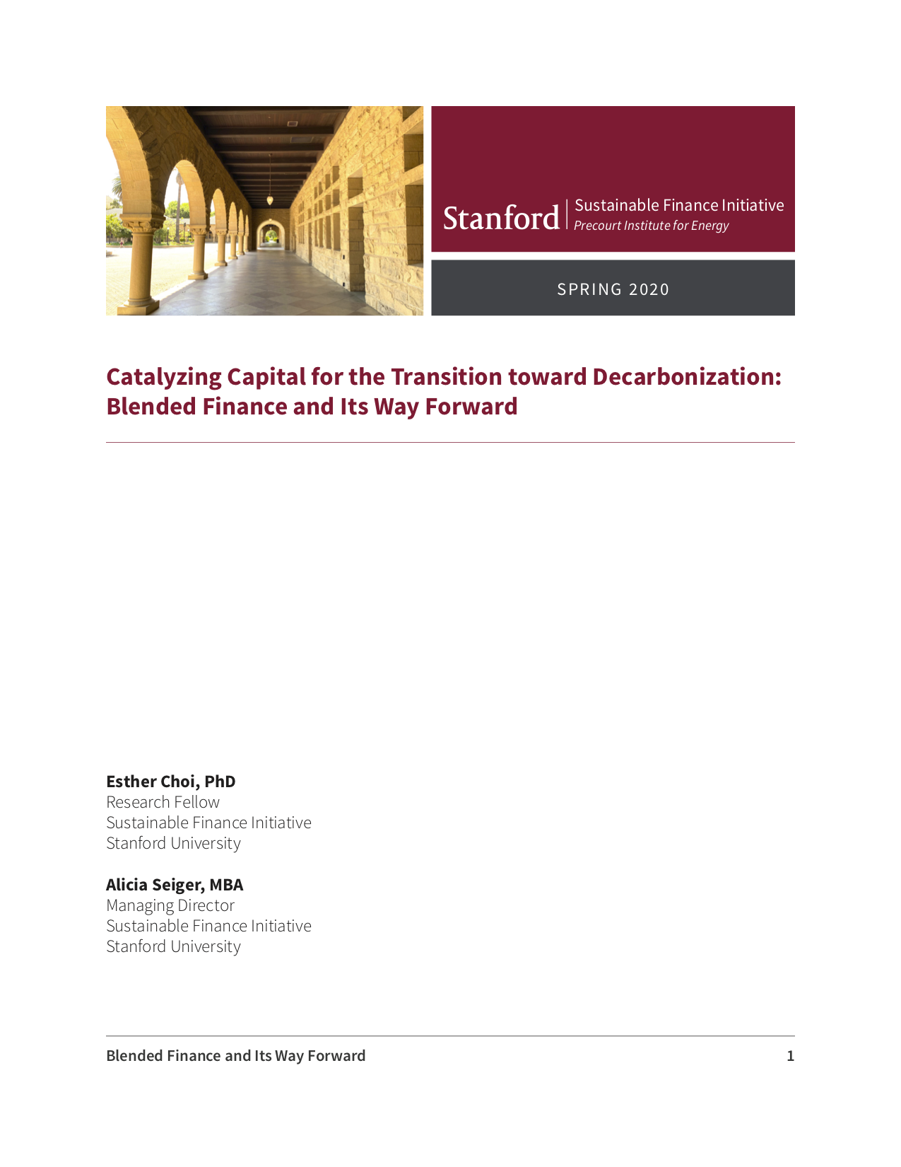 Catalyzing Capital for the Transition towards Decarbonization: Blended Finance and Its Way Forward