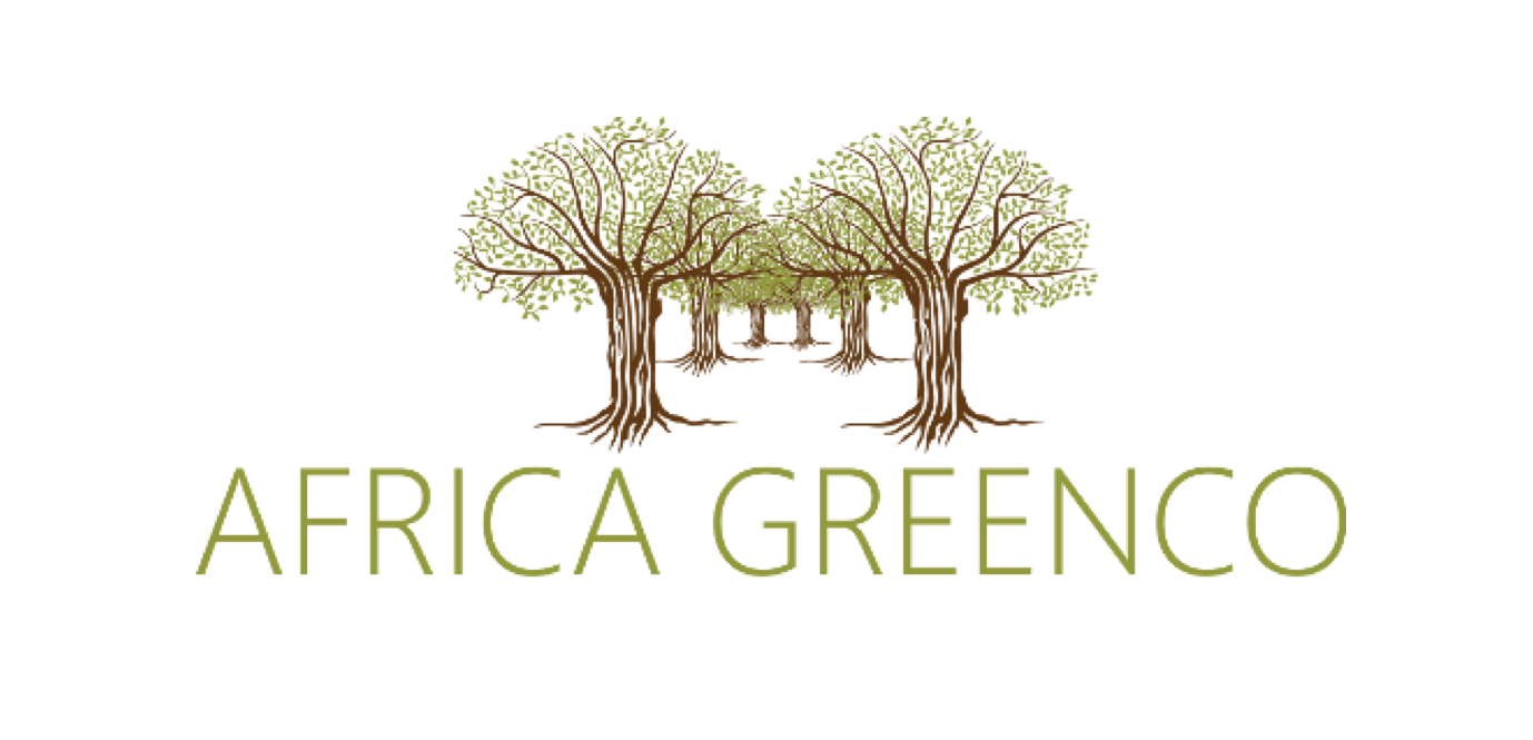 Design of Africa GreenCo, an intermediary off-taker and aggregator of renewable energy projects in SSA