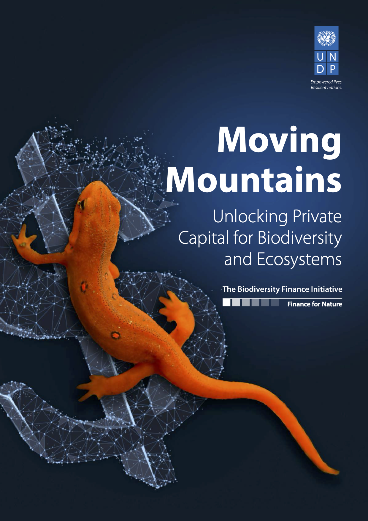Moving Mountains - Unlocking Private Capital for Biodiversity and Ecosystems