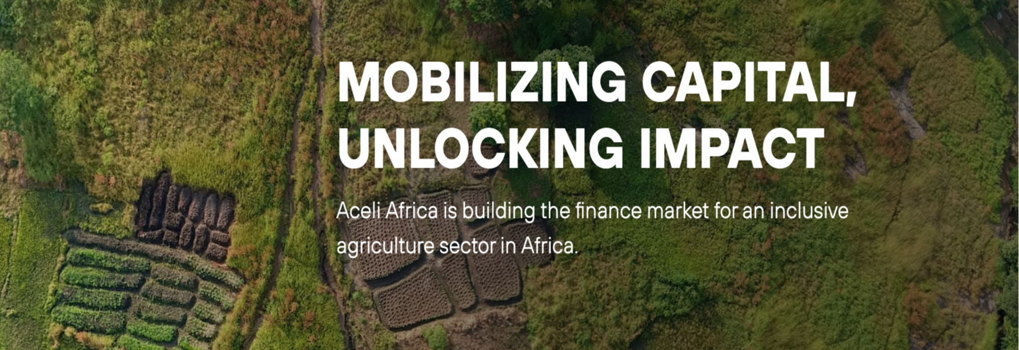 Aceli Africa Launches as New Market Incentive Facility for Agricultural SMEs
