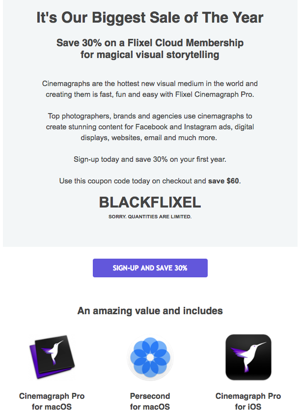 black-friday-flixel-email-campaign-1.png