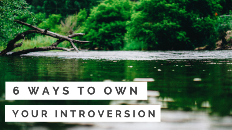 6 Ways to Own Your Introversion