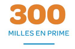 300 Bonus Miles