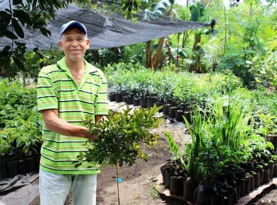 Our borrower ECLOF International is a pioneer in the microfinance and sustainable agriculture sectors. Isidro Montas (pictured) is a client of ECLOF Dominican Republic. He runs a thriving lemon, avocado, and decorative palm farm. Isidro says that he owes this success to his passion for work and ECLOF's economic advice.