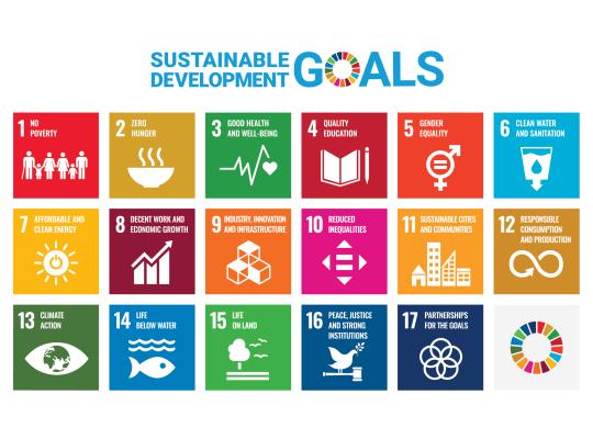 SDG Poster 2019 without UN emblem WEB