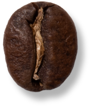 Dark-Roast-Bean