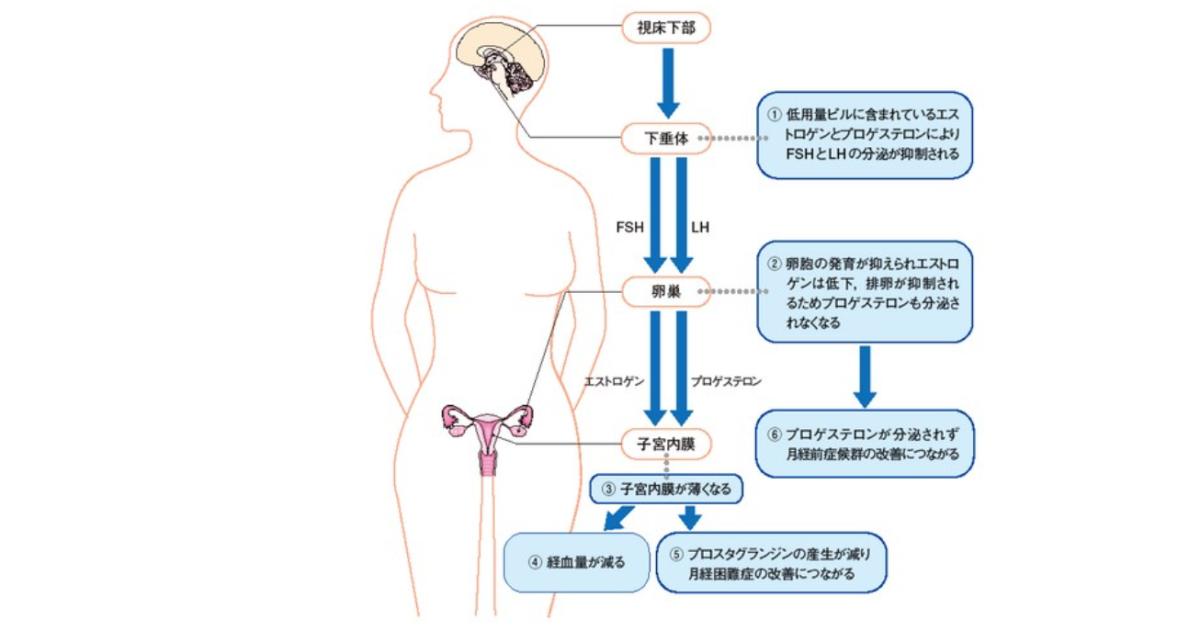 低用量ピルによる月経困難症の改善