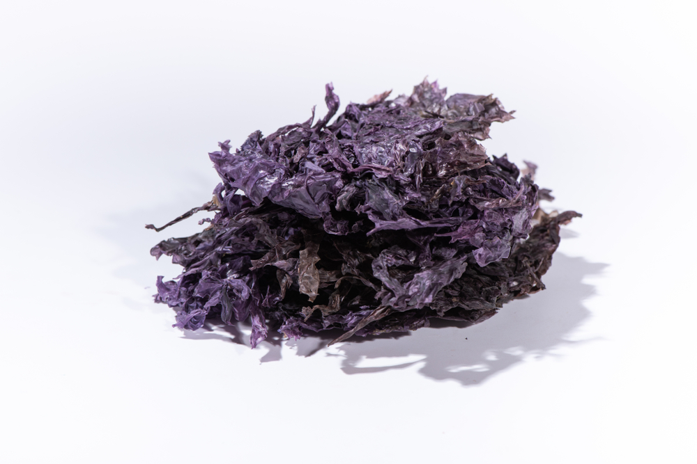 Korean purple laver dried seaweed vegetarian source of vitamin B12