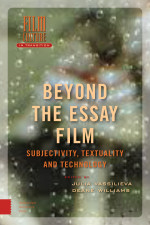 Beyond the Essay Film