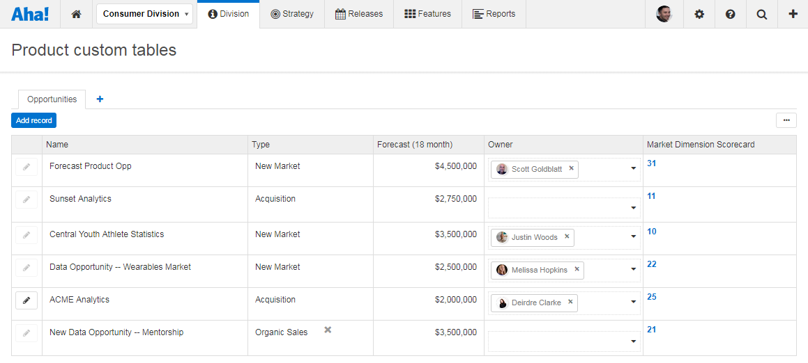 Support - Use custom tables to manage strategic opportunities - inline image