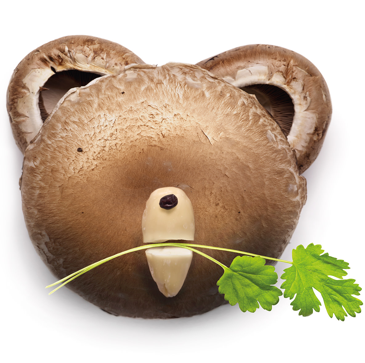 An image of a bear's face made out of mushrooms, with a piece of coriander in his mouth.