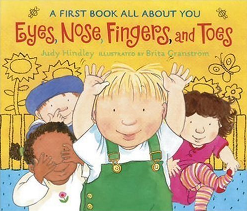 Eyes, Nose, Fingers and Toes Book - $6.99