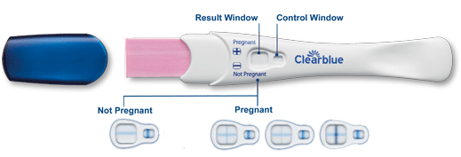 How to Read a Pregnancy Test: Positive and Negative Results