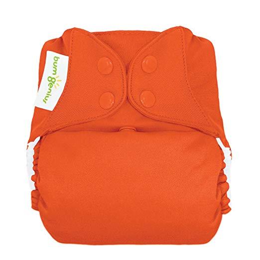 bumGenius All-in-One Cloth Diaper - $21.95