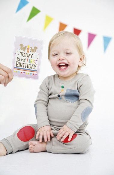 Milestone Baby Cards  - $24.00