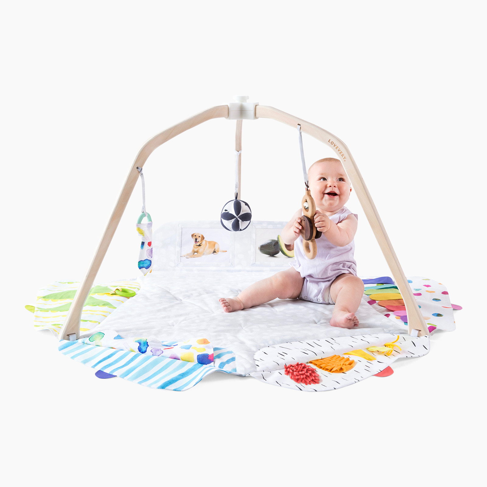 Lovevery The Play Gym | Babylist Store