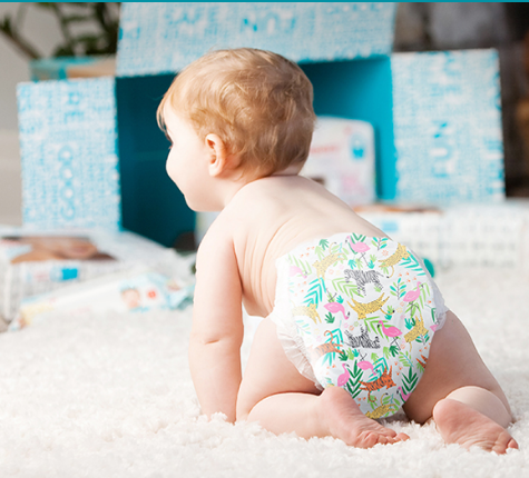 Monthly Diaper and Wipes Subscription - $79.95