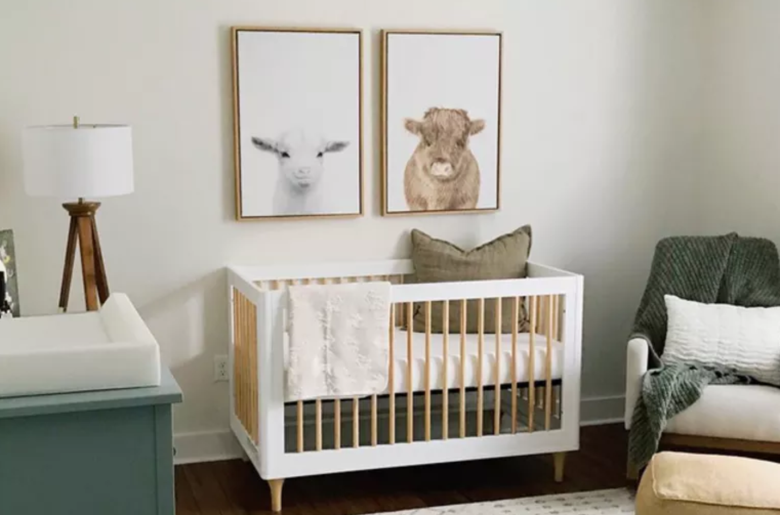 Baby Essentials Photo