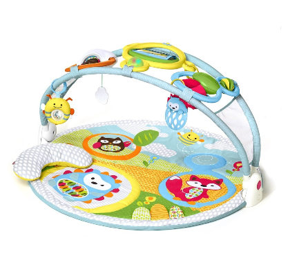 Baby Activity Play Gym for Floor - Explore & More | Skip Hop - $90.00