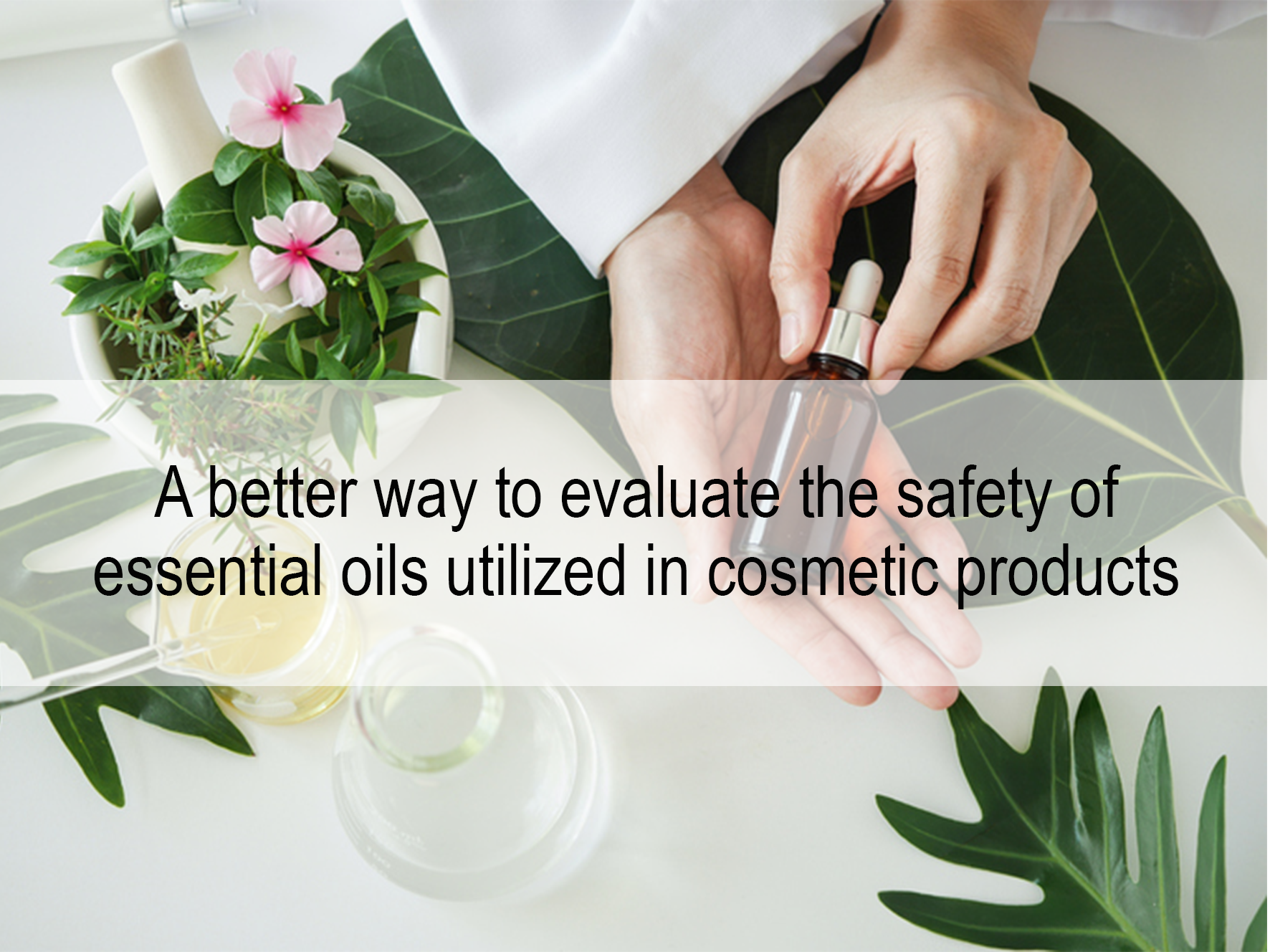 A better way to evaluate the safety of essential oils utilized in cosmetic products by Eurosafe