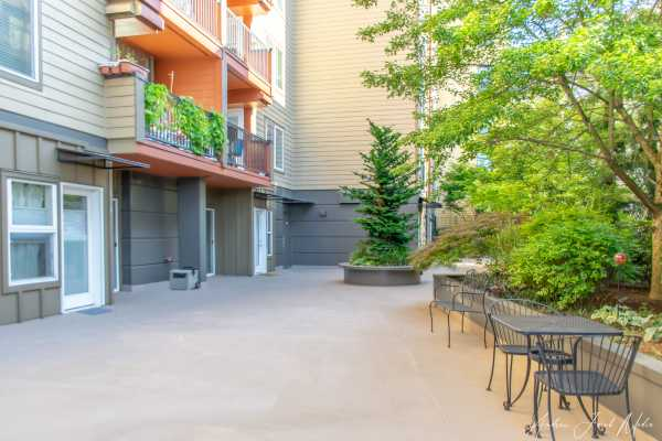 Court yard view at Illumina apartments