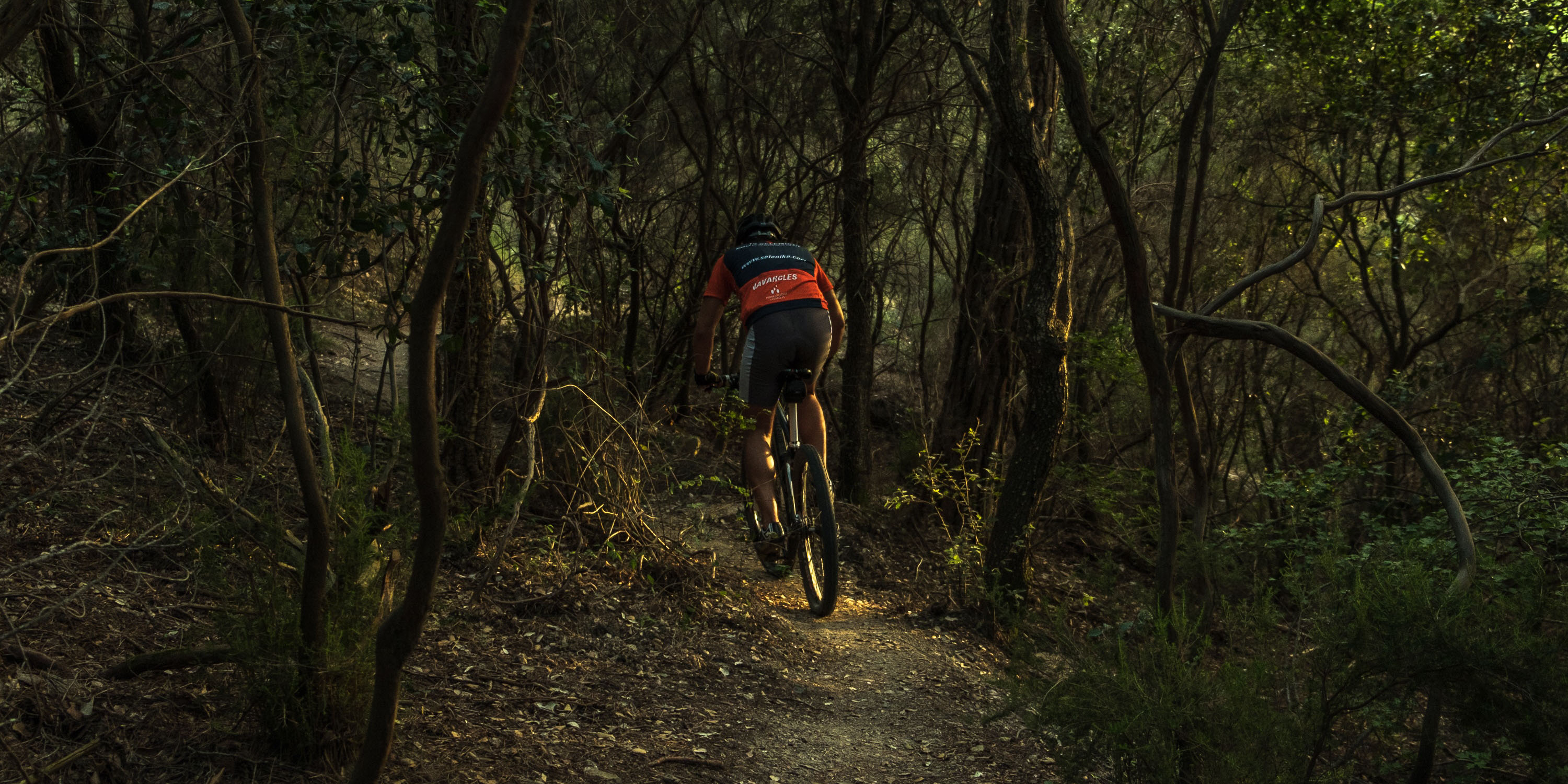 Mountain bike through forests.