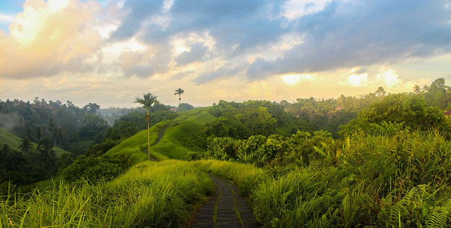 Campuhan Ridge Walk, Bali