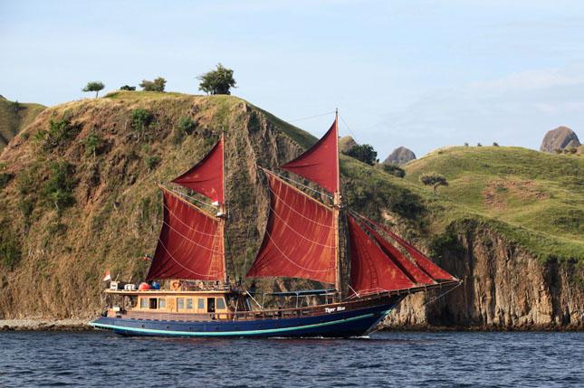 Indonesian Sea Safari