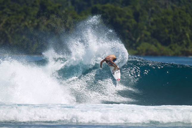 Taylor Knox, Indonesia