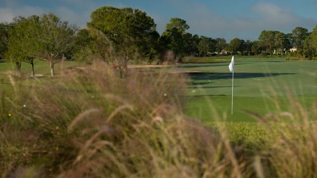 Texan Omar Uresti Eagles Twice to Set a 54-Hole Record, Building a Six-Stroke Lead in the Senior PGA Professional Championship