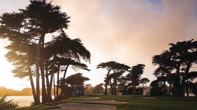 Escape To Golf: @TheGolfHawk Shines at 2020 PGA Championship