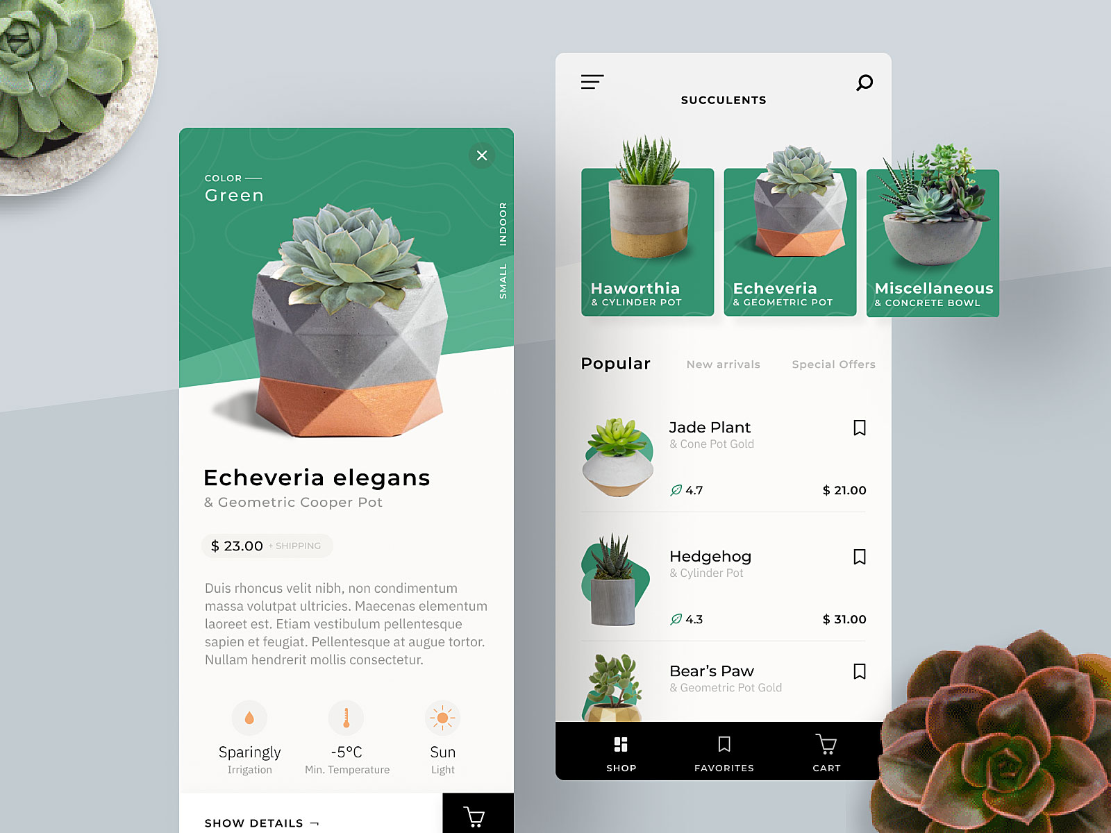 Find more of my current work on dribbble.