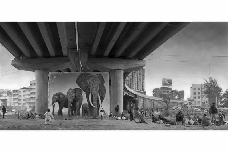 UNDERPASS-WITH-ELEPHANTS-roar-1-1