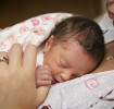 Bebés prematuros: El desarrollo