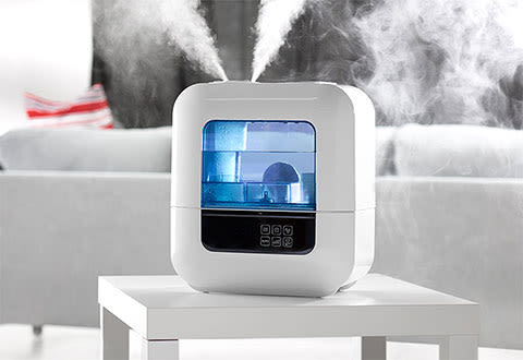 Self-Cleaning Humidifier