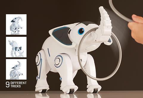 RC Interactive Elephant