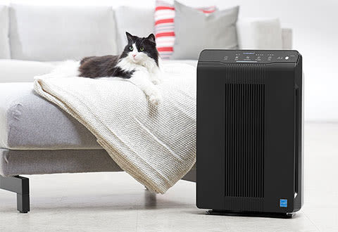 Pet Air Cleaner with PlasmaWave Technology