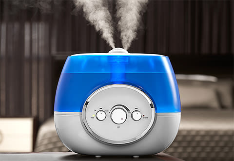 Warm And Cool Mist Humidifier