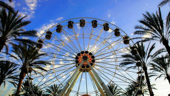 A ferris wheel surrounded by palm trees