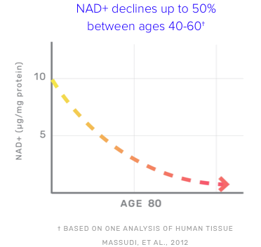 Graph showing that NAD+ declines up to 50% between ages 40-60