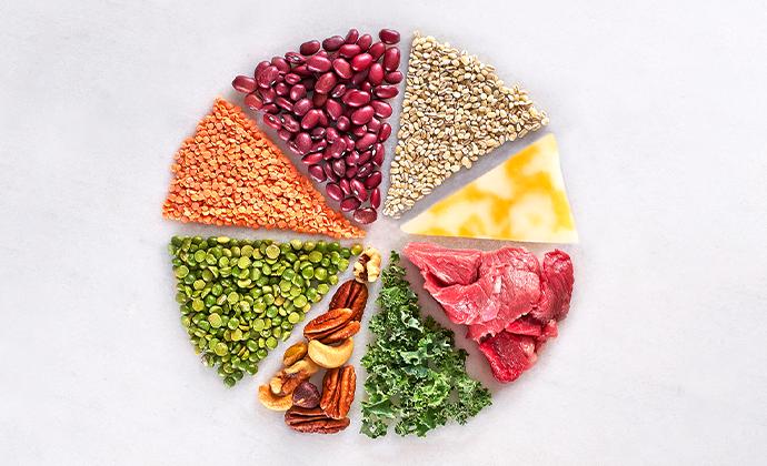 food group pie chart