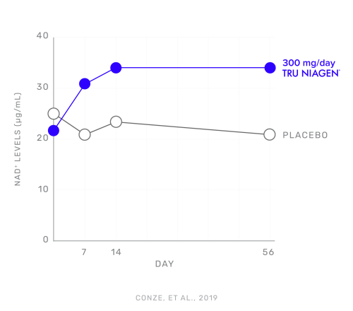 KGK 56 Days Graph