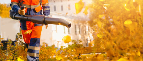 11 Of The Best Tools For Landscapers