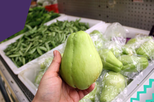 """a hand holding green chayote""""A"""