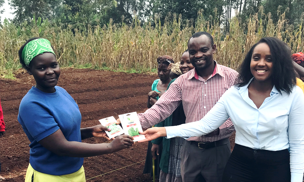 "Kenyan entrepreneur Njeri Muhia standing in the field in Africa with African entrepreneurs shaking hands ""A"
